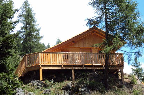 Sommer, Almwiesenhütte, Mörtschach, Kärnten, Kärnten, Österreich
