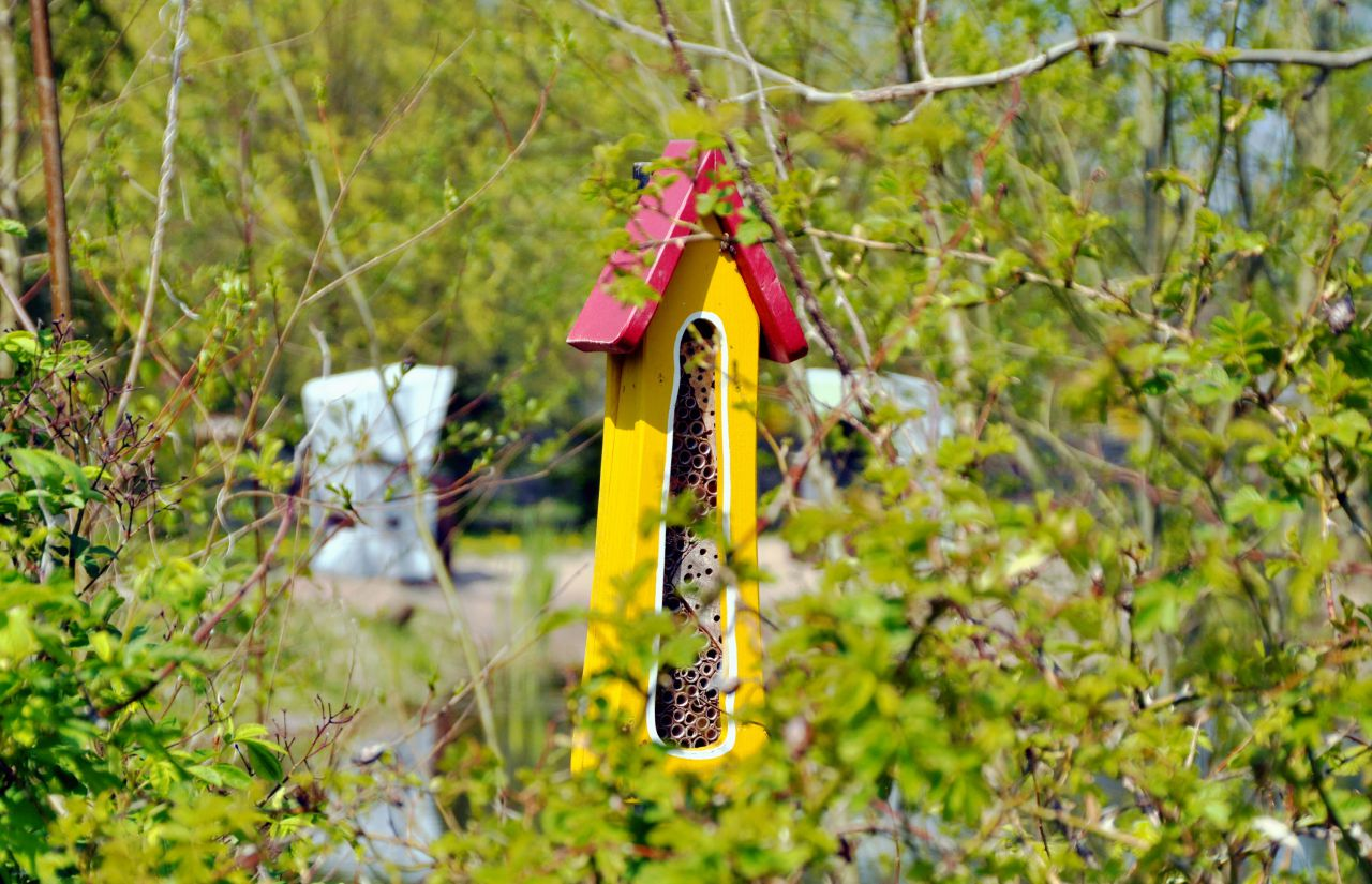 Biohotel Gut Nisdorf: Insektenhotel