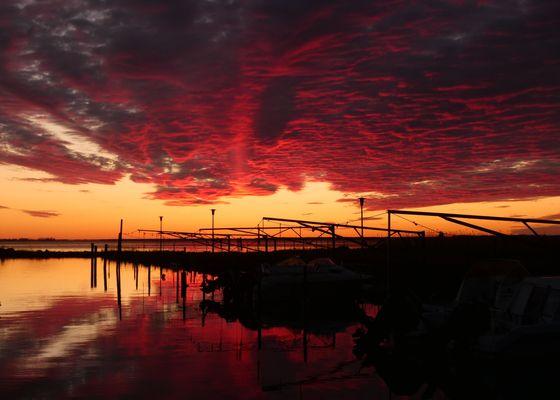 Urlaub - Gut Nisdorf - Bio Urlaub an der Ostsee