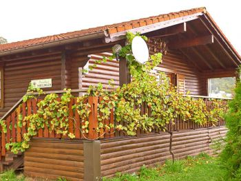 Ferienhaus Nibelungen - Lower Austria - Austria