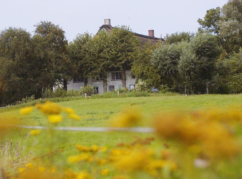 Biohotel Haus am Watt: Herzlich Willkommen - Haus am Watt, Heringsand, Schleswig-Holstein, Deutschland
