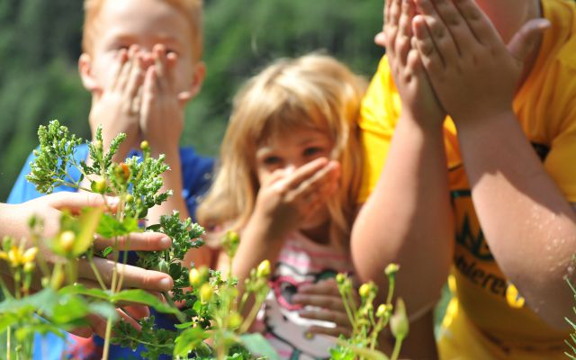 Bio-Kinderhotel Benjamin: Kräuter und Gemüse kennen lernen