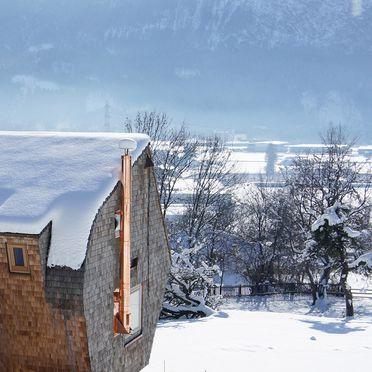 Ufogel, Winter