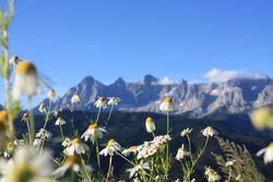 Das Dachsteingebirge in Österreich