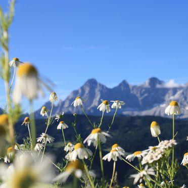 Aussicht, Chalet Dachstein , Pichl, Schladming-Dachstein, Steiermark, Österreich