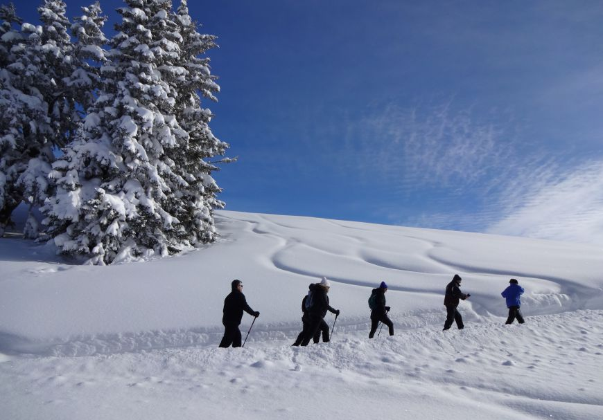 Winter hiking for gourmets   No.2