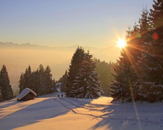 Naturschauspiel Schwarzwald | Spuren im Schnee