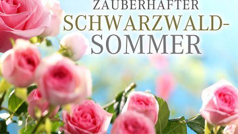Sackmanns Sommertage |  7 ÜN