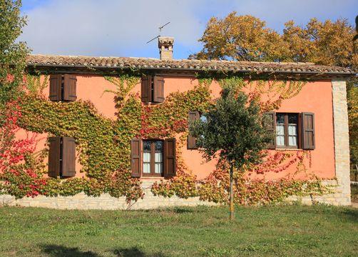 Bio-Agriturismo La Cerqua, Pietralunga (Perugia), Umbria, Italy (4/12)