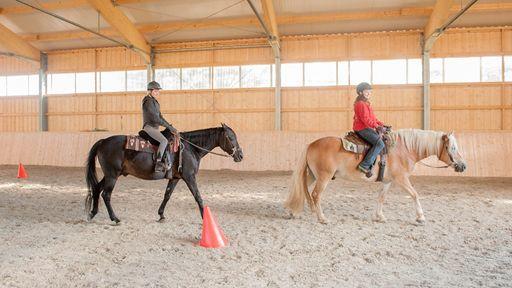 14 Pferde und Ponys warten im Westernreitstall auf Dich.