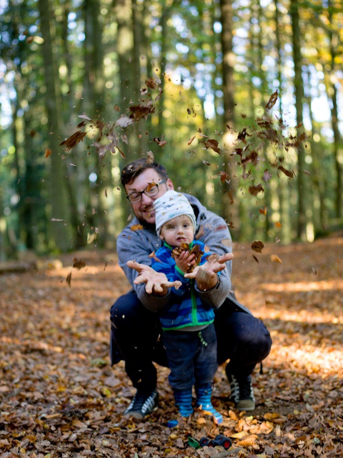 Herbst im Woid