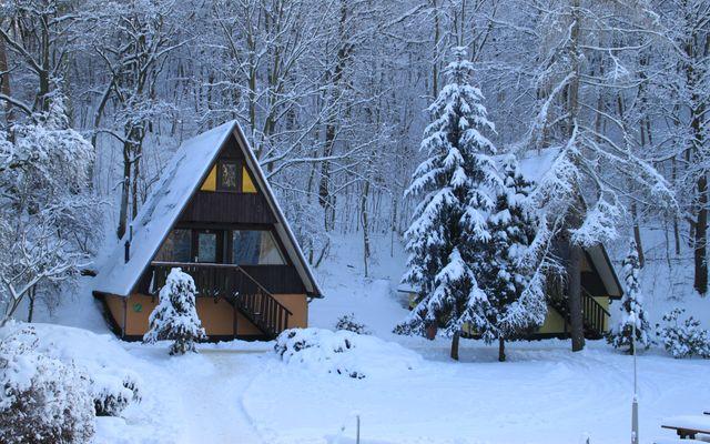 Winter (41).JPG