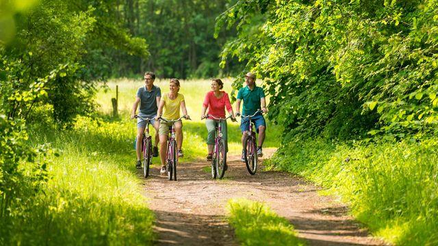 Mit Fahrrad durch die Heide