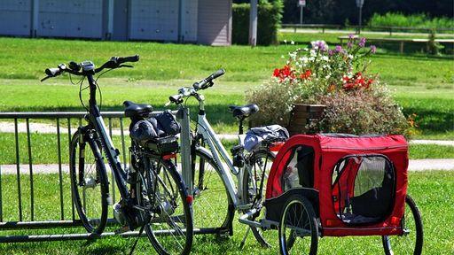 Im Allgäu können Sie eine gemütliche Radtour machen oder anspruchsvolle Mountainbike-Touren erleben.