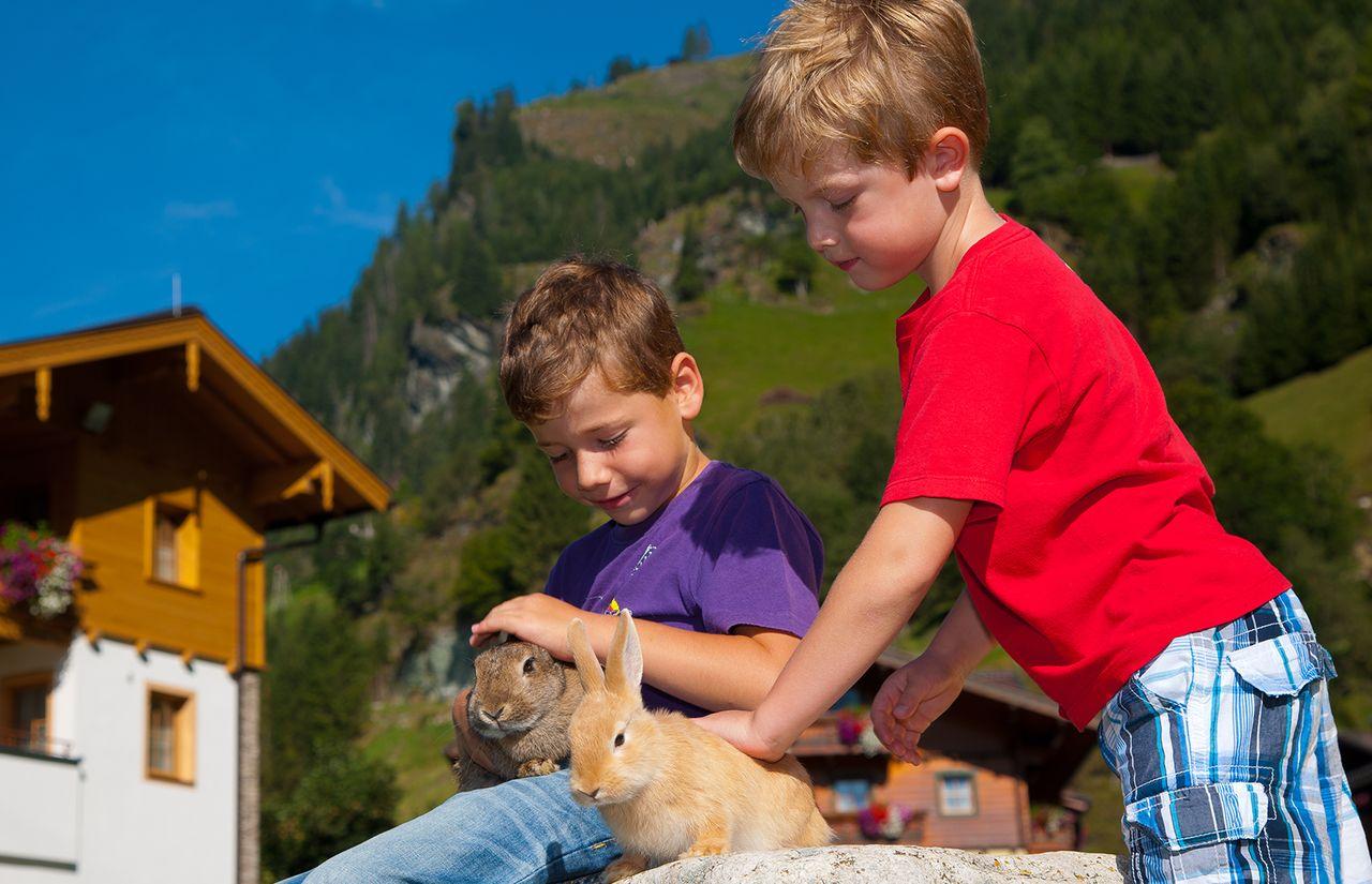 Familienhotel_Bauernhof-Hotel_Oberkarteis_Streichelzoo.jpg
