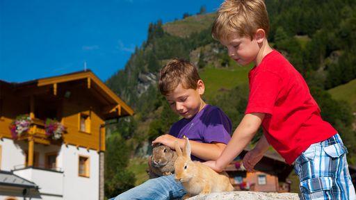 Wir freuen uns auf jede Mithilfe auf unserem Kleintierbauernhof. Eier einsammeln, Schweine füttern - es gibt viel zu tun!