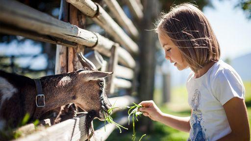 Tiere machen Kinder einfach glücklich. Es reift die Freundschaft und Verbindung zueinander.