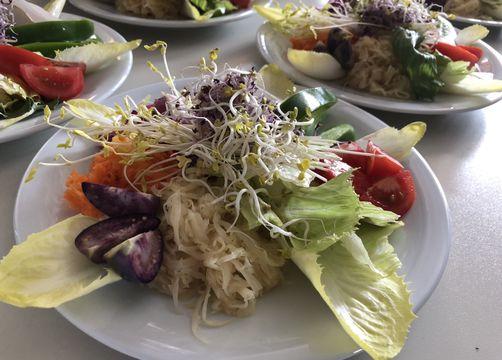 biohotel lindengut kulinarik - LindenGut