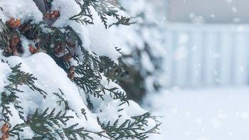 Schneeflocker'l-Auszeit