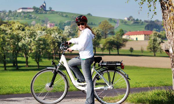 E-Biking through the first blossoms