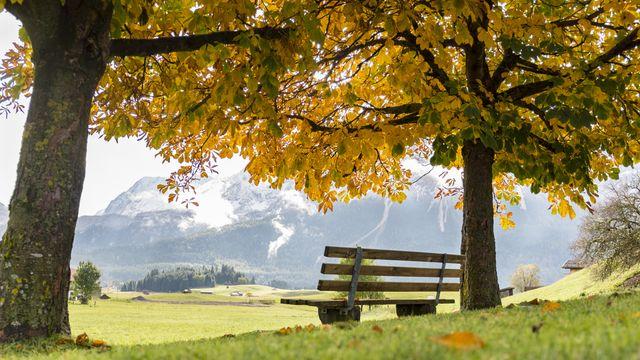Farbenfrohe Herbstwochen 2019