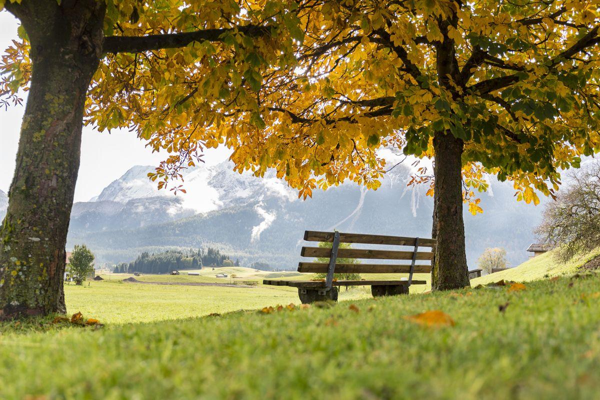 Farbenfrohe Herbstwochen