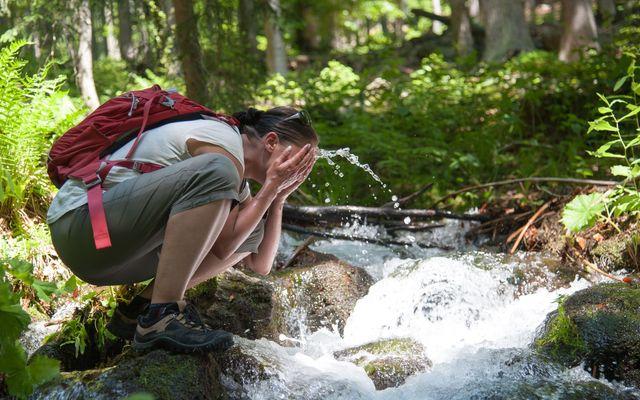 die BIO Sportpension: Wandern