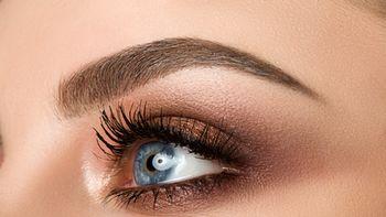 Augenbrauen-& Wimpernfärben Einzeltermin