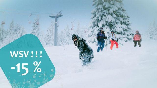 WSV - jetzt 15% sparen