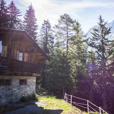 summer, Tröglesalm in Matrei, Tirol, Tyrol, Austria