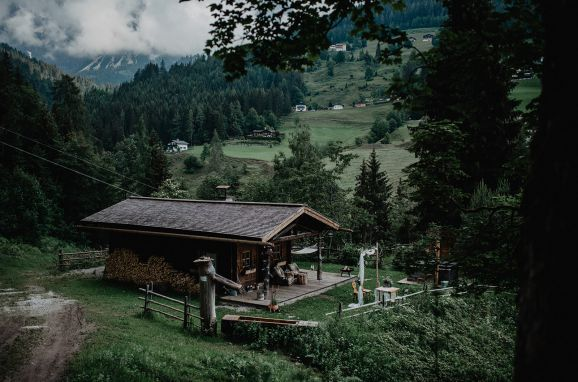 Summer, Meine kleine Alm, Mühlbach am Hochkönig, Salzburg, Salzburg, Austria