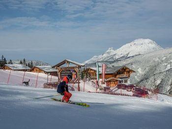 Alpine Lodge App. II - Styria  - Austria