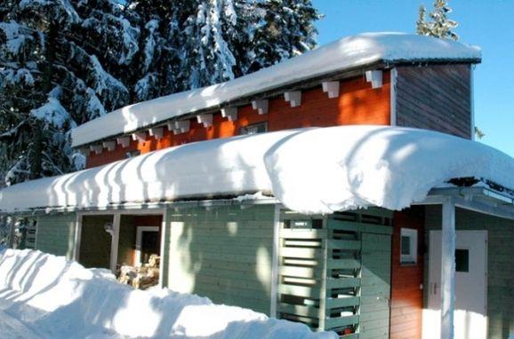 Winter, Chalet Hebalm in Pack, Steiermark, Steiermark, Österreich