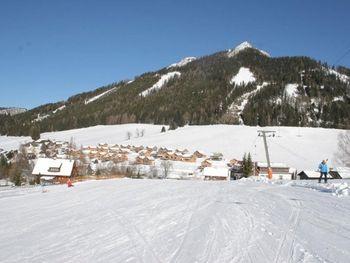 Chalet Spatzennest - Styria  - Austria