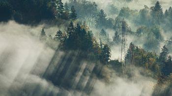 Rauhnächte im Schwarzwald