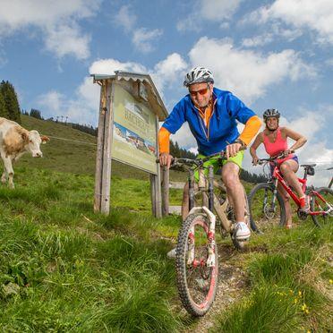 Sommer - Aktivitäten am Berg, Bachgut Berg Chalet, Hinterglemm, Salzburg, Salzburg, Österreich