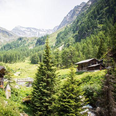 Gebiet Landeckalm, Landeckalm in Matrei in Osttirol, Tirol, Tirol, Österreich