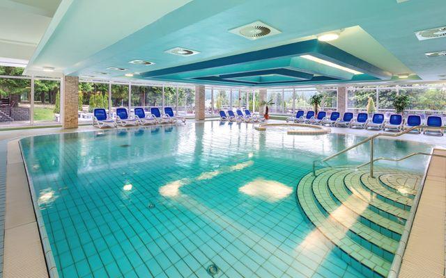Familienhotel - Schwimmbad mit Whirlpool