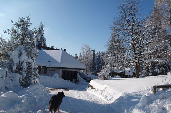 Winter, Kiefer Hütte , La Rosiere - Vogesen, Vogesen, Elsass, Frankreich