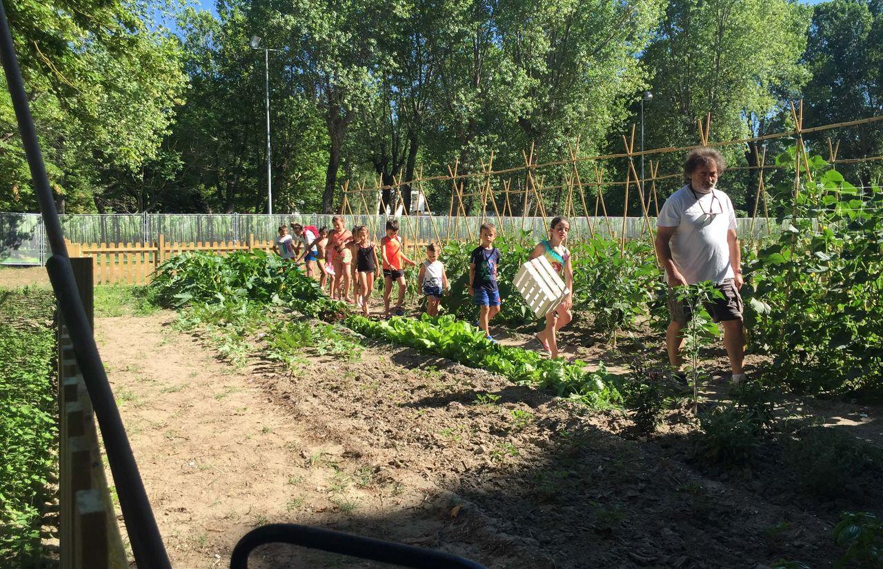 Eigener Garten mit Bio-Anbau