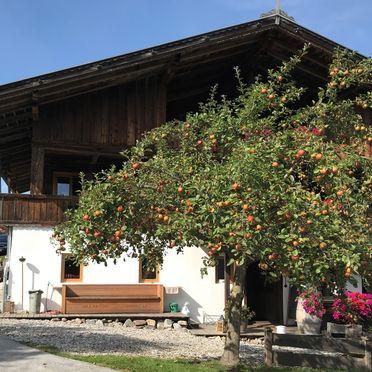 Sommer, HUGS Hütte, Oberau / Wildschönau, Tirol, Tirol, Österreich