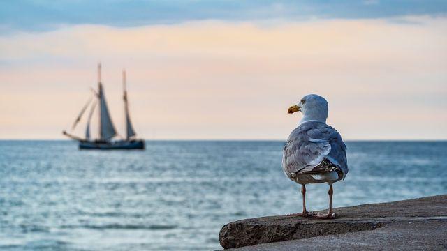 Familienurlaub im Frühling an der Ostsee