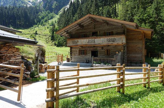 Sommer, Lacknerbrunn ASTL-Alm in Mayrhofen, Tirol, Tirol, Österreich