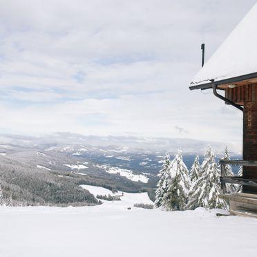 Winter, Gamsberg Hütte, Pack, Steiermark, Österreich