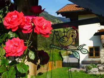 Ferienhaus Wandlehen - Salzburg - Österreich