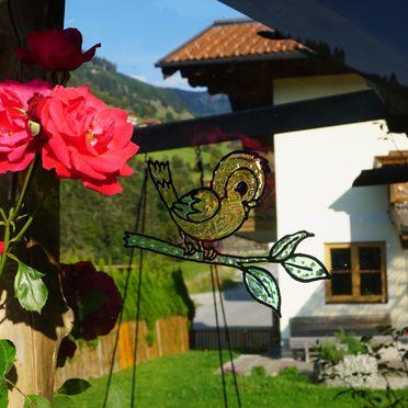Summer, Ferienhaus Wandlehen, Großarl, Salzburg, Austria