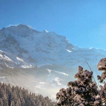 Außen Winter 14, Chalet Jungfrau an der Ledi, Wengen, Berner Oberland, Bern, Schweiz