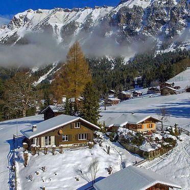 Außen Winter 25, Chalet Zwärgli in Wengen, Berner Oberland, Bern, Schweiz