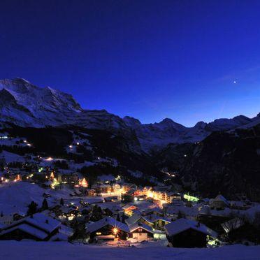 Innen Winter 27, Chalet Zwärgli in Wengen, Berner Oberland, Bern, Schweiz