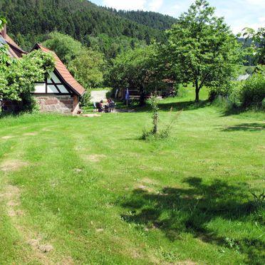 Innen Sommer 2, Ferienhütte Backhäusle, Alpirsbach, Schwarzwald, Baden-Württemberg, Deutschland